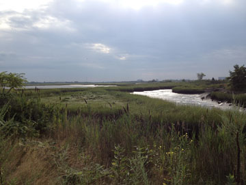 Scenic view of the Rumney Marsh in Revere.