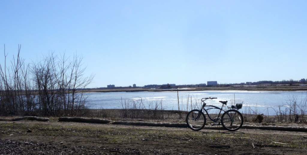 A bike on the trail with marsh in the background.